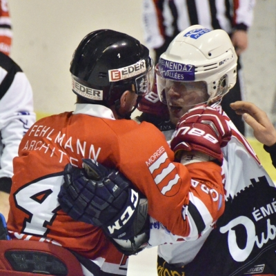 1ère ligue - gr. 3 : Forward Morges HC - HC Sion-Nendaz 4 Vallées le 06/02/2015 (par Patrick Pitton)