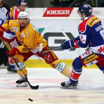 National League : EHC Kloten - SCL Tigers le 26/11/2016 (par Peter Eggimann)