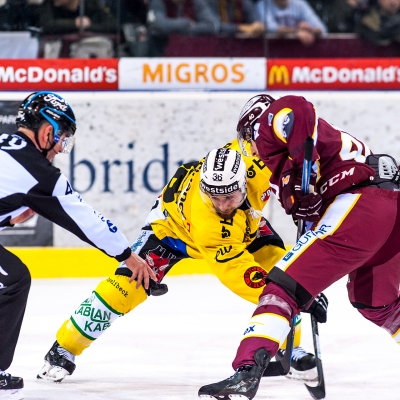 National League : Genève-Servette HC - CP Berne le 16/01/2018 (par Laurent Daspres)