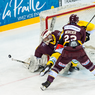 National League : Genève-Servette HC - CP Berne le 30/11/2019 (par Laurent Daspres)