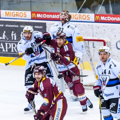 National League : Genève-Servette HC - HC Fribourg-Gottéron le 25/11/2017 (par Laurent Daspres)