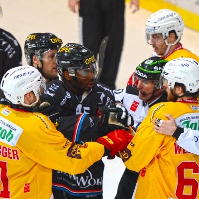 National League : HC Fribourg-Gottéron - SCL Tigers le 11/03/2017 (par Michael Lehner)