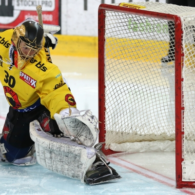 National League : SCL Tigers - CP Berne le 07/01/2017 (par Peter Eggimann)