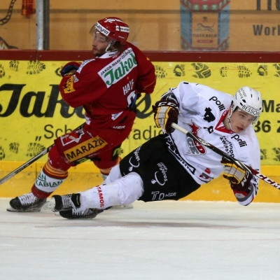 NL B : SCL Tigers - HC Red Ice le 30/12/2014 (par Peter Eggimann)