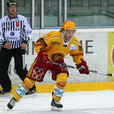 Swiss League : HC Bâle - SCL Tigers le 11/02/2014 (par Peter Eggimann)